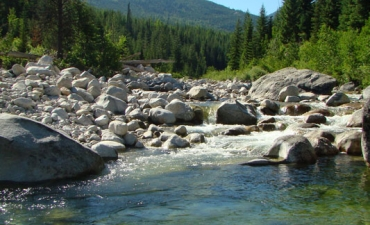 Boulders in a cold water creek